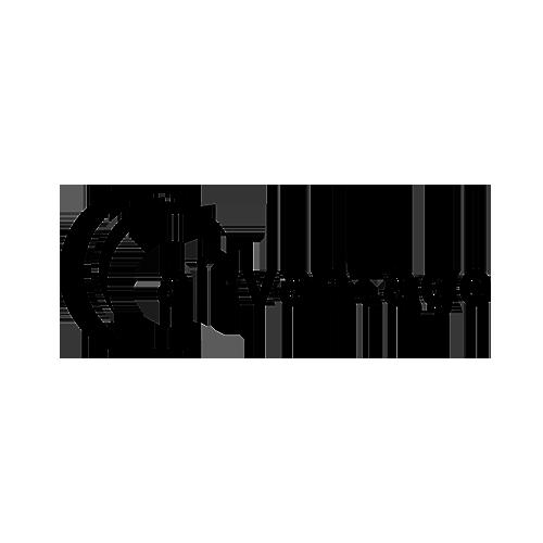 Logo airvantage logo sizing 500x500
