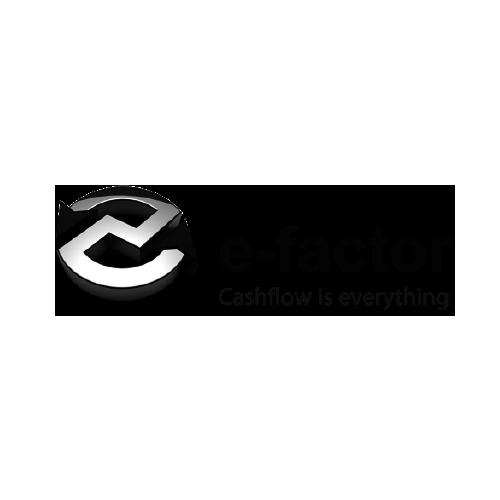 Logo e factor logo sizing 500x500 01