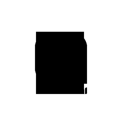 Logo alphacode gold nomanini 500