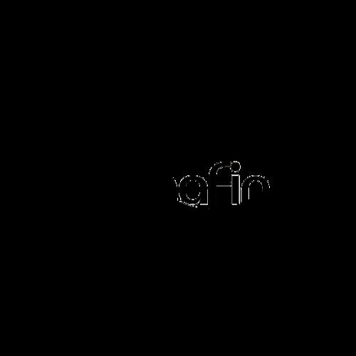 Logo alphacode gold imafin
