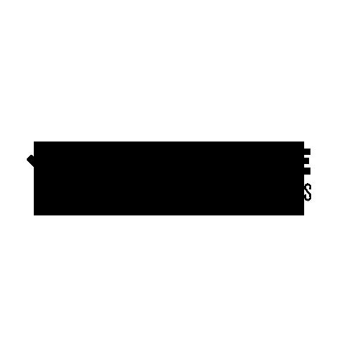 Logo alphacode gold bitsure